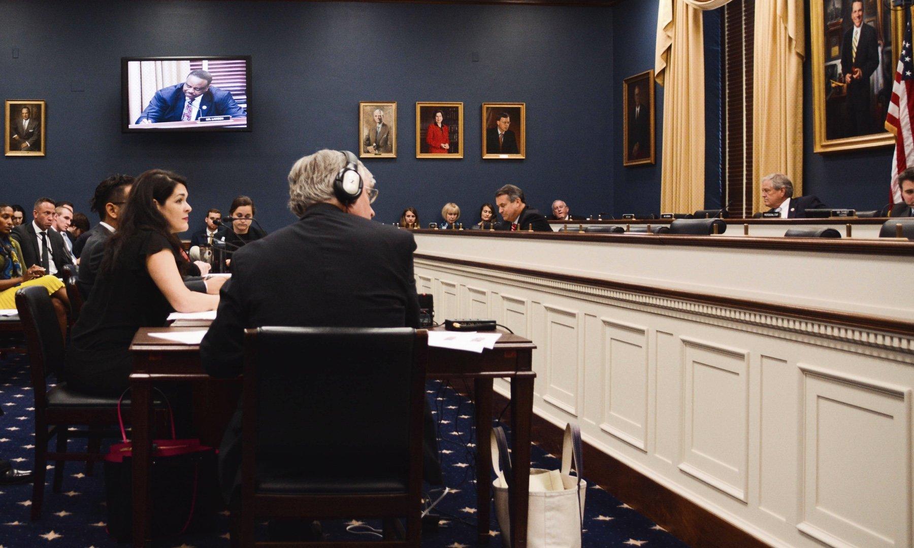 Professor Caroline Bruckner testifying in front of Congress