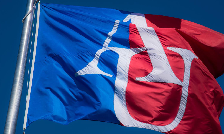 American University flag